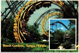 Florida Tampa Busch Gardens The Dark Continent The Python Roller Coaster