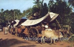 Malaysia, Malaya Malacca Bullock Carts