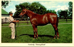 Kentucky Lexington Keenland Race Course Thoroughbred Yearling Ready For Sale