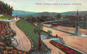 Winter in Elysian Park, Los Angeles, California, Early Postcard, Unused