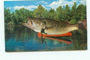 Giant Bass The Big One Got Away FL