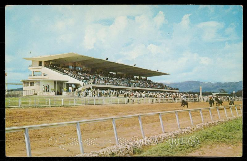 Caymans Race Track, near Kingston, Jamaica