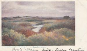 NANTUCKET , Massachusetts , 1901-07; A Nantucket Swamp