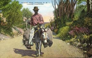 curacao, N.W.I., Country Road, Camino Campestre, Donkey Transport (1940s)