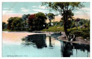 Early 1900s Oilmill Pond, Danbury, CT Postcard