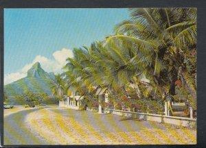 Mauritius Postcard - Tamarind Trees, Tamarin Village   T4377