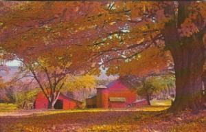 Farm Scene Fall Leaves