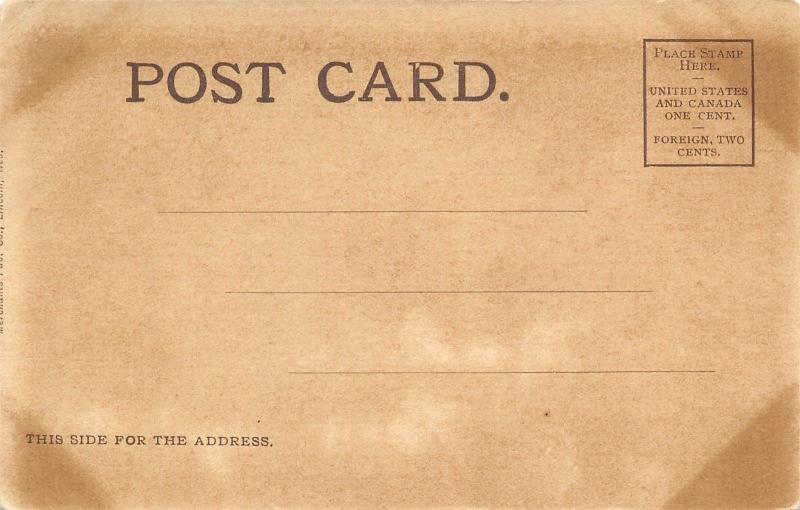 Lincoln Nebraska~State Hospital for the Insane~1906 Postcard