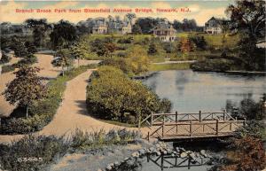 Newark New Jersey~Branch Brook Park View @ Bloomfield Avenue Bridge~'11 Postcard