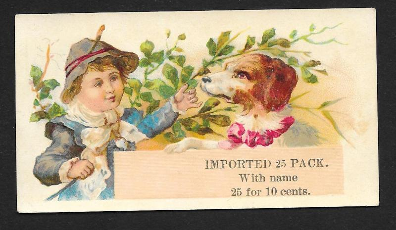 VICTORIAN TRADE CARD Stock Card Sales Boy, Dog & Leaves