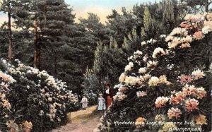 Rhododendron Land Brantsome Park Bournemouth United Kingdom, Great Britain, E...