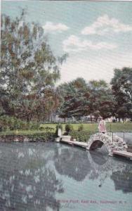 Fancy Bridge on Willow Pond - Rochester, New York - DB