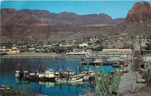 Vintage 1960s Postcard; Guaymas Shrimp Fleet Fishing Sonora Mexico Unposted