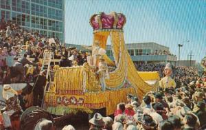 Louisianas New Orleans Mardi Gras