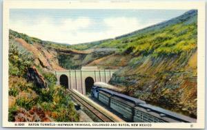 Vintage Fred Harvey Train Railroad Postcard RATON TUNNEL Linen c1940s Unused