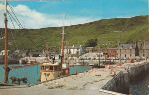 Scrabster from the Harbour,  40-60s