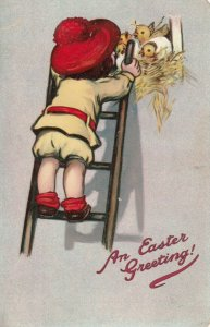 EASTER Greeting, 1901-07; Child on ladder looking at chicks in nest; TUCK