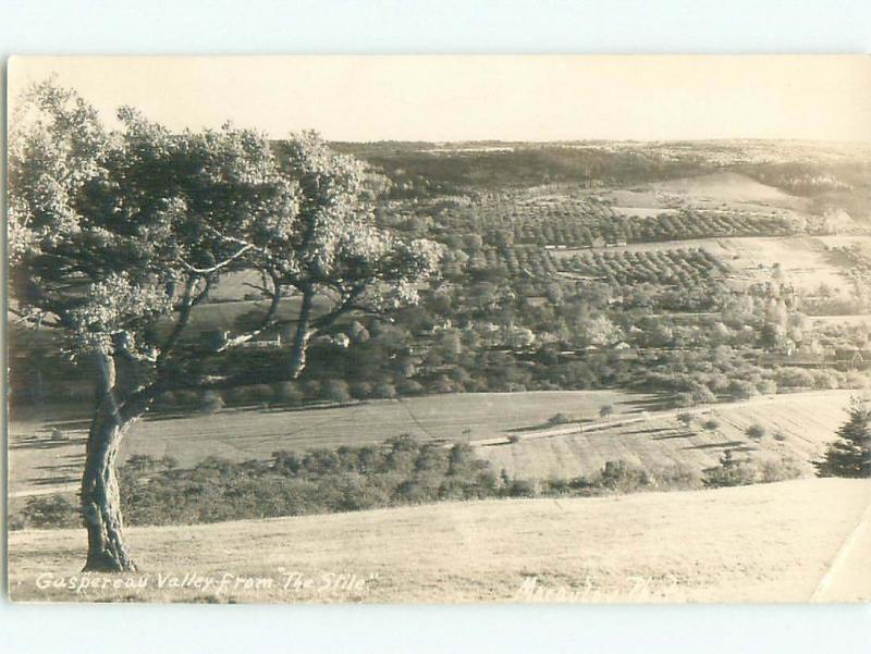 Pre-1962 rppc NICE VIEW Gaspereau - Near Wolfville Nova Scotia NS W1002