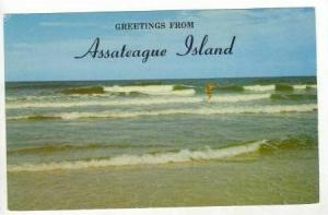 Greetings from Assateague Island, Maryland,40-60s