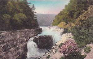 Lower Falls Letchworth State Park P O Castile New York Handcolored Albertype