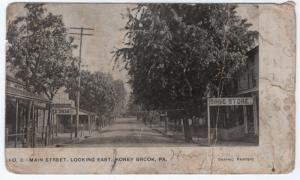 1910 Honey Brook PA Main Street Looking East Drug Store Ice Cream RARE Postcard