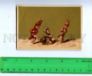 188984 FAIRY Snail and shrimp Vintage card