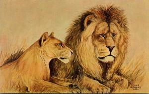 Wisconsin Madison Lions By Jens von Sivers At Henry Vilas Park Zoo