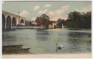 Hampshire; Cam's Mill, Fareham PPC, 1906 PMK, To Miss Streetly, Reading
