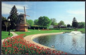 Tulips,Dutch Windmill,Sunken Gardens Park,Pella,IA