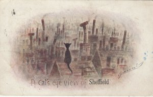 A cat's eye view of SHEFFIELD , UK , 1909