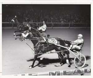 MEADOWLANDS RACE TRACK, Mannart Full Speed Wins, 1982