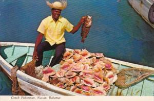 Conch Fisherman Nassau Bahamas