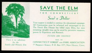 Save The Elm - for Connecticut blotter – Send a Dollar
