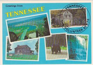 Tennessee Nashville Greetings From Tennessee The Volunteer State
