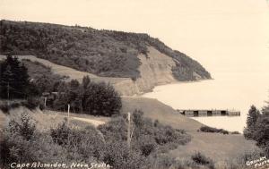 Cape Blomidon Nova Scotia Canada Birdseye View Real Photo Postcard K106988