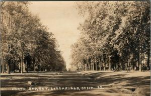 Litchfield Connecticut~North Street Homes Tucked Behind Trees~Tile~1920s RPPC