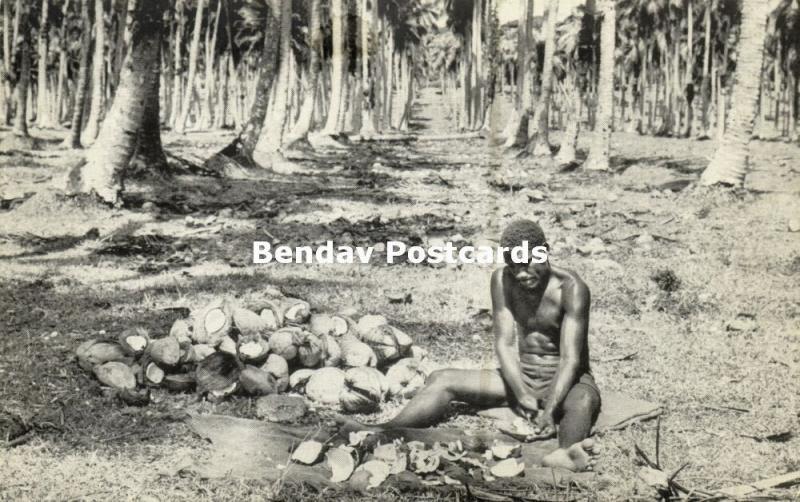 new hebrides, Vanuatu, Native Man extracting Coconut Kernal for Copra (1950s)