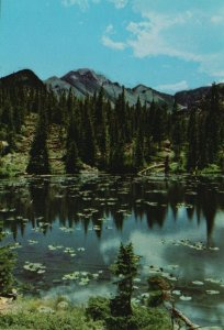 Colorado, CO, Nymph Lake, Long's Peak, Glacier Gorge, 1955 Chrome Postcard g8375
