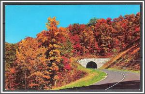 United States Autumn Scene Tunnel on the Blue Ridge Parkway