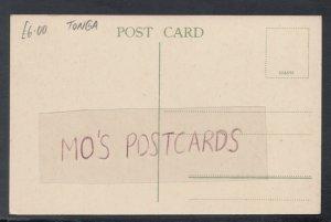 Tonga Postcard - Bush Scenery, Tongatabu  HP647