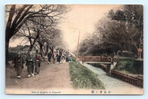 Postcard Japan Koganei Cherry Blossom Hand Colored  K11