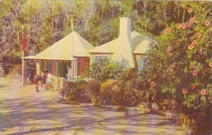 Bermuda The Plantation Club