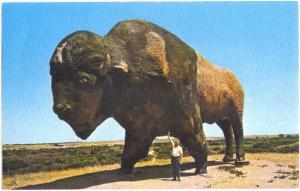 World's Largest Buffalo, Jamestown North Dakota ND