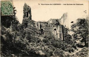 CPA Environs de Limoges - Les Ruines de Chalucet (390597)