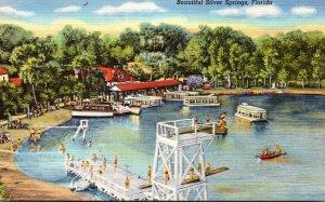 Florida Silver Springs Glass Bottom Boats At Docks Curteich