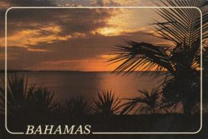 Bahamas Nassau Beautiful Sunset