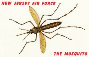 New Jersey Air Force, 1950-60s ; The Mosquito