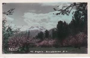 Mt. Dagbie, Revelstone, British Columbia, Canada, PU-1956