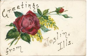 Postcard, Ruby Red Rose and Yellow Lilacs Greetings from Joslin Illinois