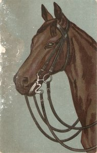 A Horse Old vintage French postcard